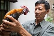 Vietnam man with big cock by Adam Robert Young
