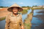 rice farmer Vietnam