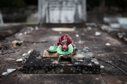 rose grave cemetery Brisbane